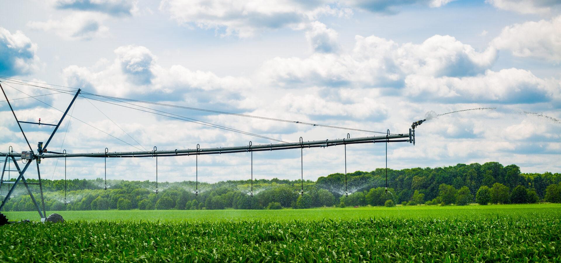 Agri-food tech start-ups