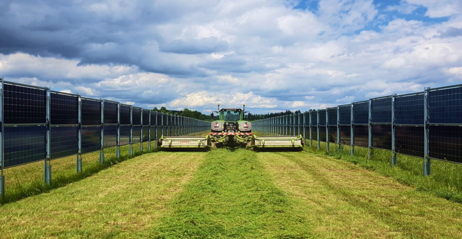 Agriphotovoltaics